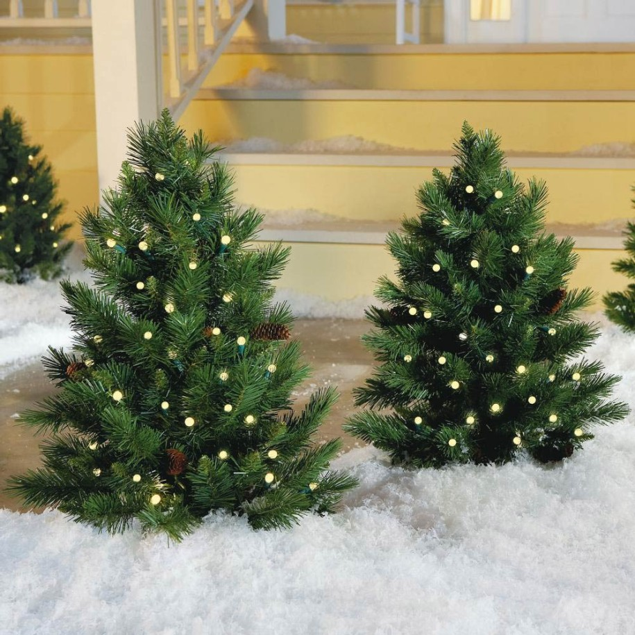 Fresh Green Outdoor Christmas Tree