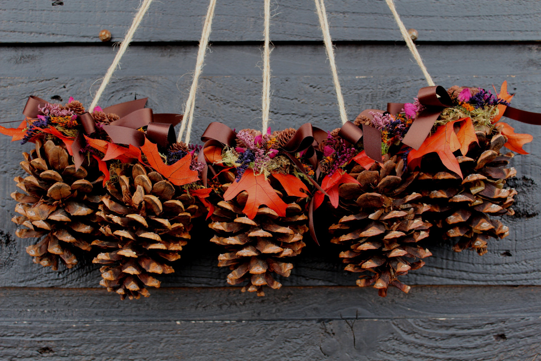 pinecones decorations ...4
