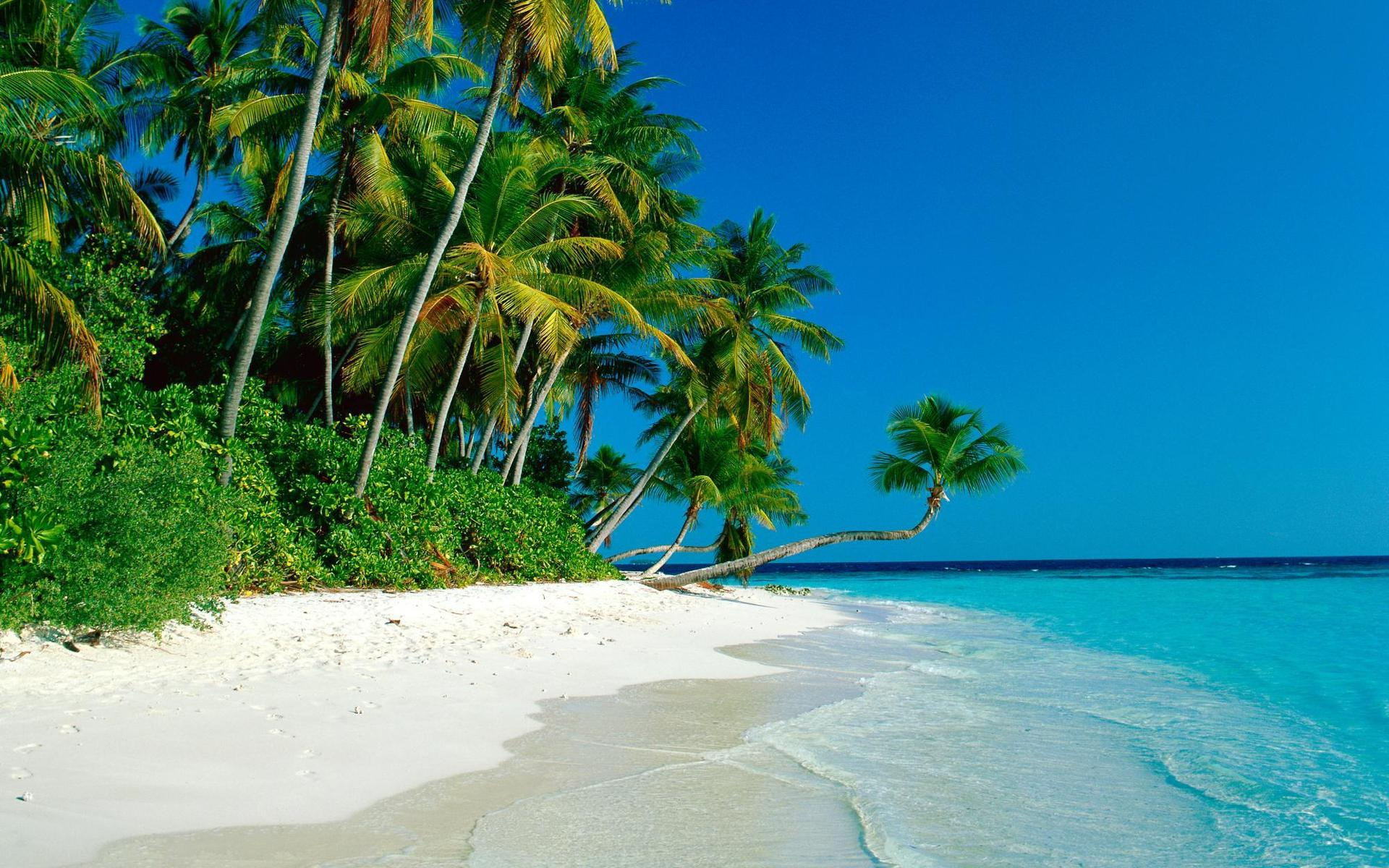 tropical-beach-new-hd-wallpapers-of-high-resolution-free-cook-islands-images.