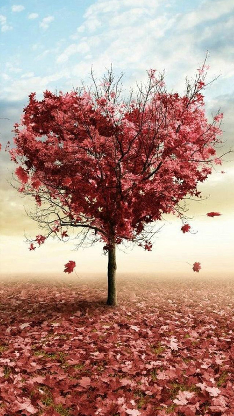 tree-love-iphone-6-wallpapers