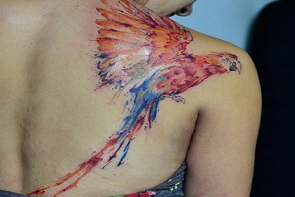 watercolor-macaw-tattoo